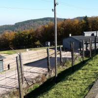 Baracche nel campo di Natzweiler Struthof