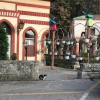 Travnik l'antica capitale bosniaca. Caffè di Lutvo.